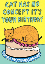 This Cat Has No Concept It's Your Birthday
