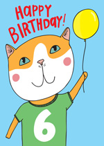 Cat Top 6th  Birthday